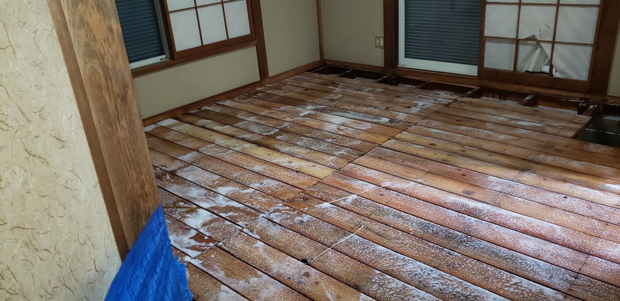 和室畳をどかし 駆除剤を散布